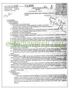 raport-154-234x300 Armia Krajowa
