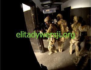 GROM-9-1-300x230 Jednostka Wojskowa GROM