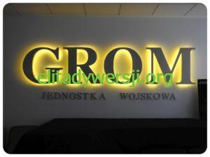 GROM_DSCN0981-300x225 Jednostka Wojskowa GROM