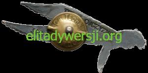 cc-Nowodworski-02-Znak-Spadochronowy-2-300x148 Cezary Nowodworski - Cichociemny