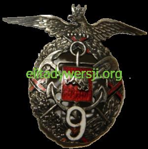 Odznaka-9-pulk-saperow-300x303 Jan Jaźwiński