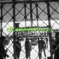 KL-Buchenwald-250x250 Tadeusz Benedyk - Cichociemny