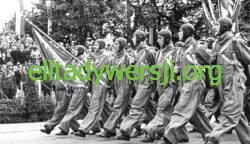 Uroczystosci_3_Maja_w_Warszawie_-_skoczkowie_LOPP_1939-250x144 Historie prawdziwe i nieprawdziwe....