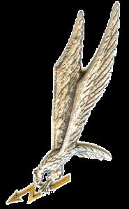 Grom-odznaka-185x300 Jednostka Wojskowa GROM