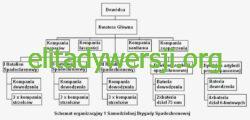 Schemat_1SBS-250x120 1 Samodzielna Brygada Spadochronowa